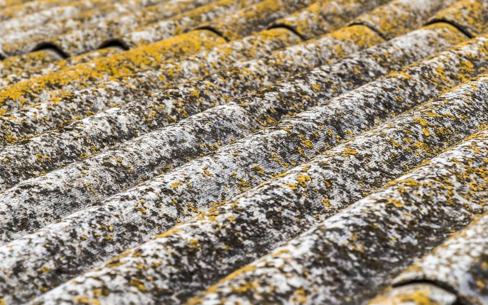 Expert Asbestos Removal Brisbane CBD 1
